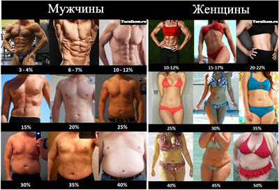 как определить процент жира в организме, как узнать процент подкожного жира в организме, содержание жира в организме,