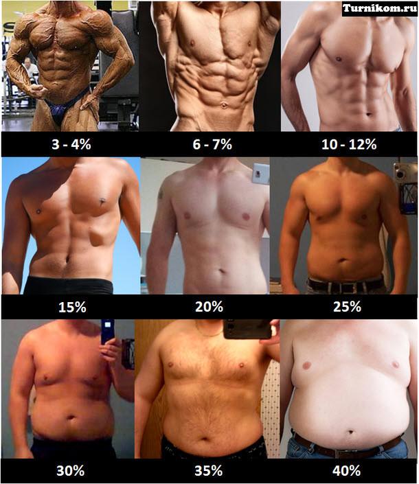 Как сделать из жира мышцы