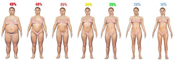 подкожный жир фото женщин